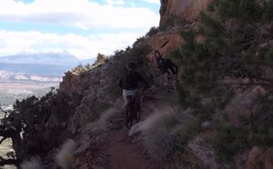 The trail is difficult enough, and then my friend Brian endoed.